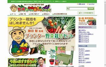 プランター野菜栽培セット