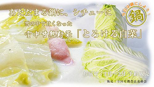 雪中甘熟野菜