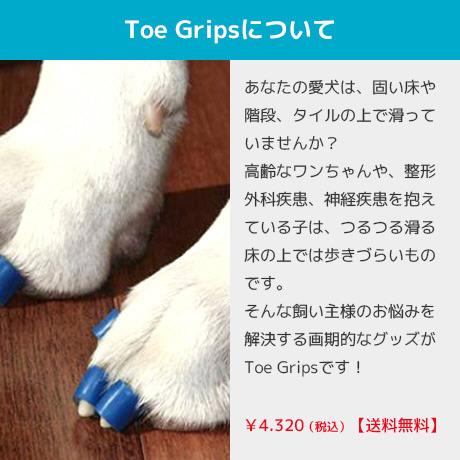 Toe Grips(トゥ・グリップス)