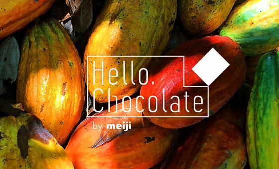 Hello,Chocolate by meiji